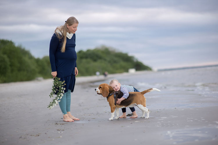 Baby Beagle Bonding Casual Clothing Day Dog Domestic Animals Friendship Full Length Leisure Activity Lifestyles Mammal Mom Nature One Animal One Person Outdoors Pets Pregnant Real People Sky Standing Walking Young Adult Young Women