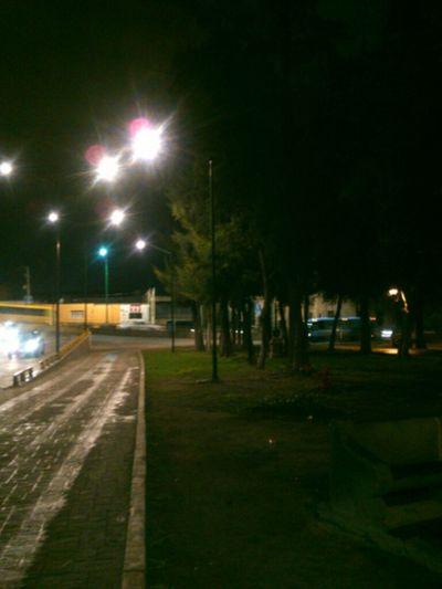 Un paseo por la noche Walking Around