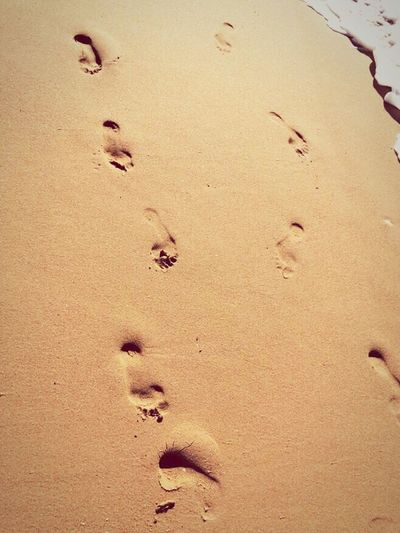 Footprints in the sand Sand Beach FootPrint Paw Print Animal Track Nature Shore Backgrounds No People Track - Imprint Outdoors Day Portugal Beauty In Nature