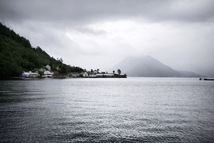 The water of Hardanferfjorden by rain Mountain Nature Landscape Cloud - Sky Water Outdoors Sea No People Scenics Beauty In Nature Day Sky Fjørd Fjord Hardangerfjorden Norway Norway Nature Beautiful Nature Beauty In Nature Nopeople Rainy Day Rainy Grey Sky Onaboat
