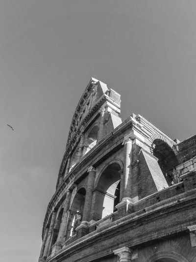 Coliseum Architecture Built Structure Building Exterior Sky Low Angle View No People History Nature The Past Building Day Travel Clear Sky Travel Destinations Religion Belief Old Place Of Worship Spirituality Outdoors Ancient Civilization Rome Italy Coliseum Blackandwhite