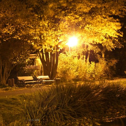 My first try to take photos at night. I chose a beautiful place where I love to rest. Night Light Bench Relax Water Reflections Tonight Light Darkness Photography Yellow
