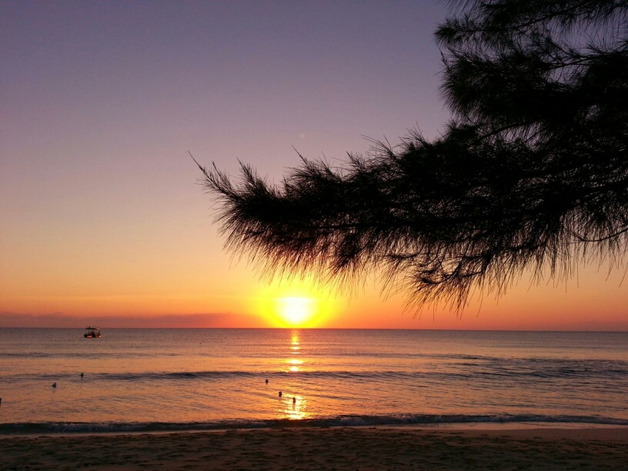 sunset, sea, horizon over water, beauty in nature, scenics, beach, water, tranquil scene, nature, sun, tranquility, orange color, idyllic, sky, silhouette, no people, outdoors, clear sky, tree, travel destinations, wave, vacations, horizon