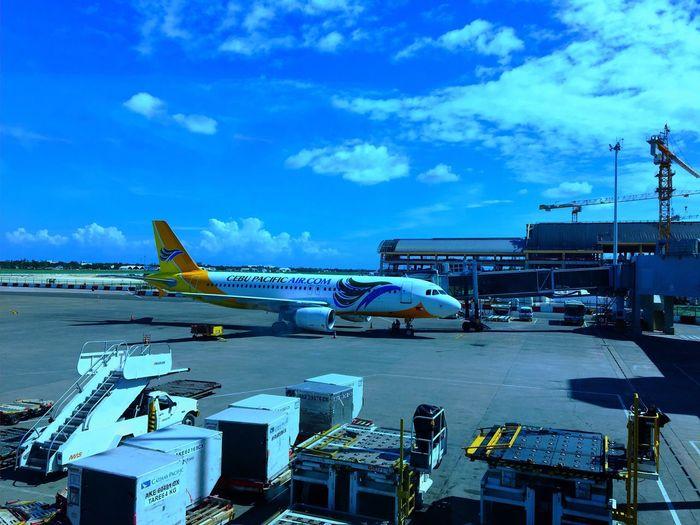 Mactan Airplane Transportation Cloud - Sky Sky Air Vehicle