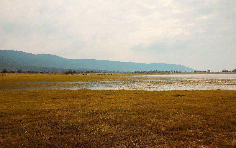 ใต้เขื่อน Nature Salt Flat Cloud - Sky Outdoors No People Mountain Day Sea Beach Landscape Environment Plant EyeEmNewHere
