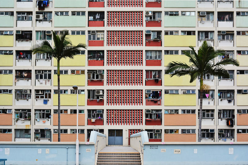 Choi Hung, colorful building in hong Kong Apartment Architecture Balcony Building Exterior Built Structure City Day No People Outdoors Palm Tree Tree Window