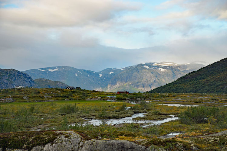 View along Trolltunga hike Norway Beauty In Nature Cloud - Sky Day Environment Grass Growth Landscape Mountain Mountain Peak Mountain Range Nature No People Outdoors Range Scenery Scenics - Nature Sky Snow Snowcapped Mountain Tranquil Scene Trolltunga Norway Hiking Water Wilderness