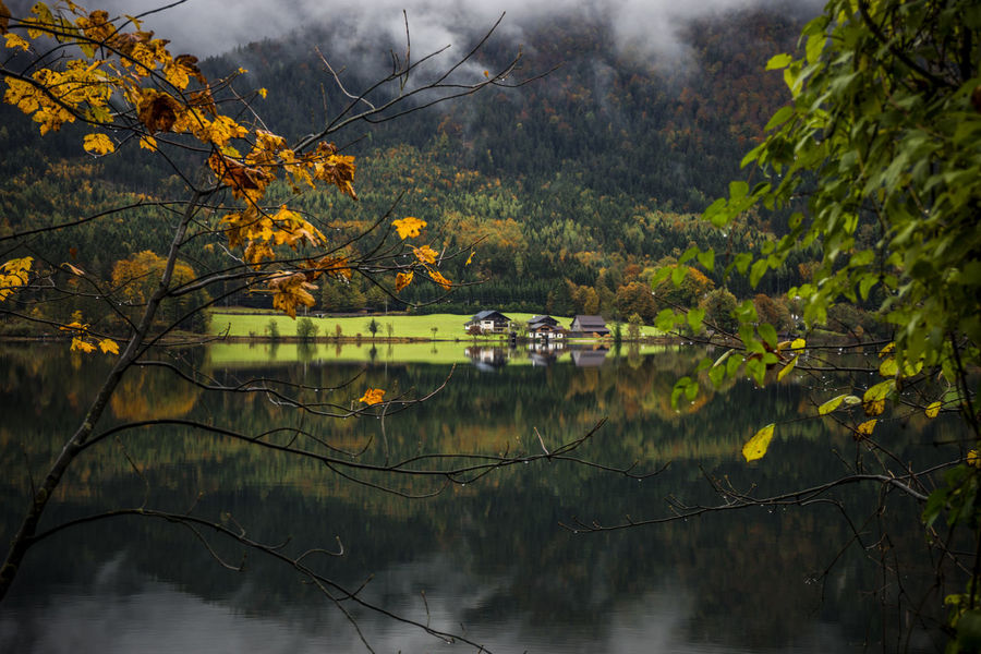 43 Golden Moments Austria Best Of EyeEm EyeEm Best Shots Golden Leaf Golden Leaves Reflection Reflections Road Side View Vienna