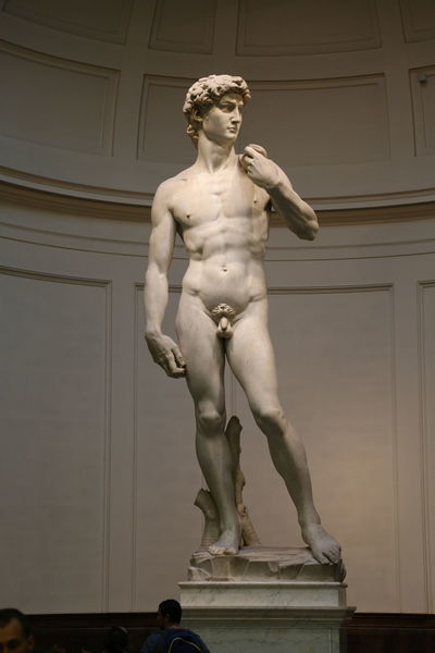 David Florence Italy Accademia Architecture Art And Craft Day Female Likeness Human Representation Indoors  Low Angle View Male Likeness Marble Michelangelo's David No People Renaissance Sculpture Standing Statue
