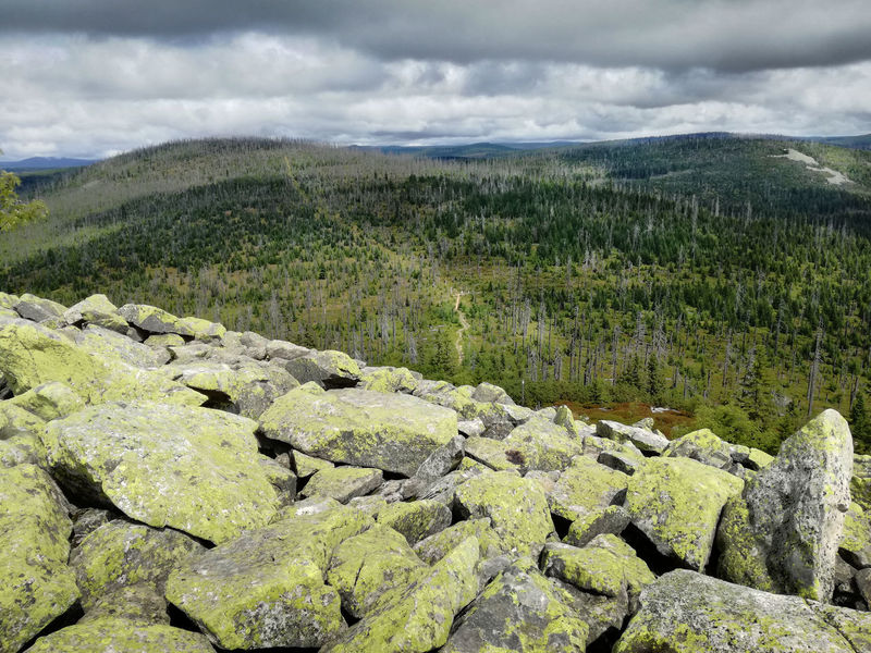 Beauty In Nature Cloud - Sky Forest From The Top Granite Formations High Angle View Landscape Lusen  Mountain Nature No People Outdoors Path In Nature Scenics Stones View From Above