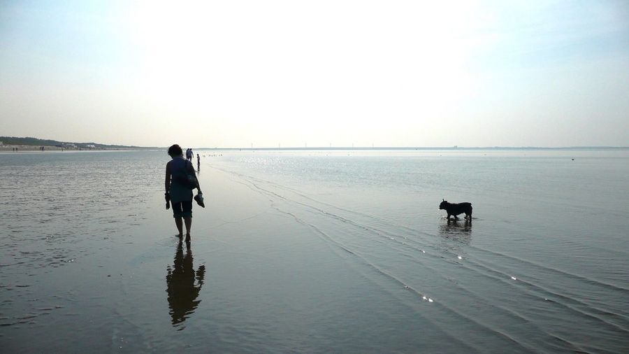 Sea Full Length Water Walking Horizon Over Water Nature Scenics Beauty In Nature Tranquility Real People Copy Space Clear Sky Rear View Beach Outdoors Men One Person Tranquil Scene Day Sky Shadows & Lights Dog Nature Reflection Lifestyles