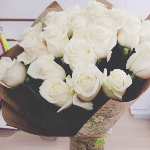 Rosé Roses Bouquet Flowers White Nature Presents Gift Plant Girls