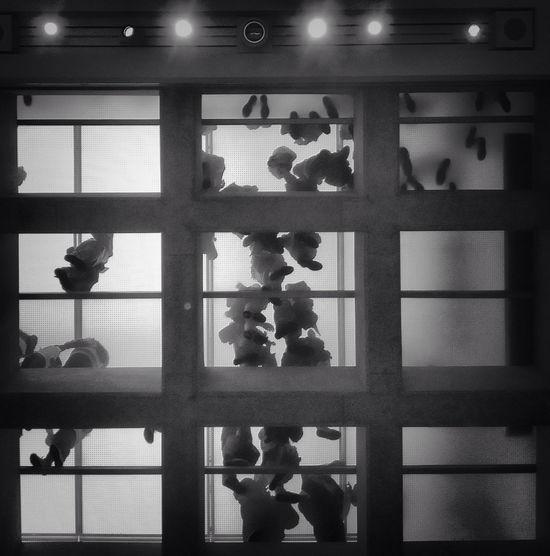 an army above EyeEm Best Shots Museum Overhead Blackandwhite Monochrome