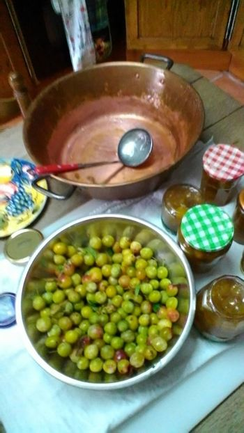 Jam Making Summertime Country Living Green Color Tablet Photography Mirabelle Plum Happy Weekend !!! 👋😀💞