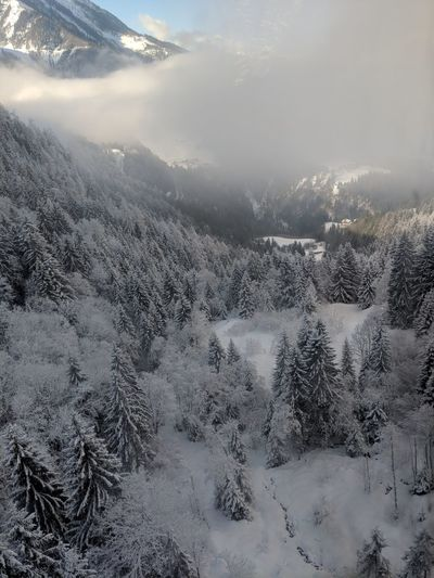 Cloud of snow