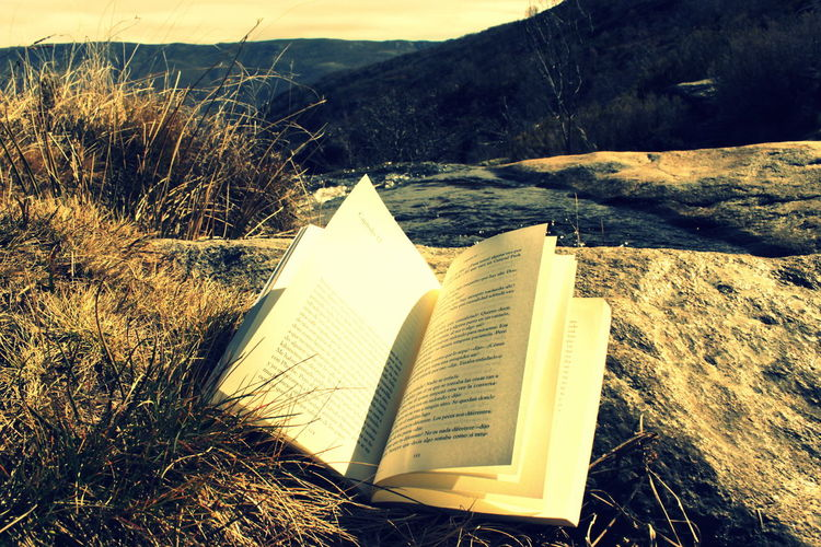 hojas al viento Book Book In Nature Sand Dune Sand Sunlight Sky Landscape Close-up Arid Landscape Page Literature Lined Paper Bookstore Book Cover Arid Climate Rocky Mountains Geology Hardcover Book