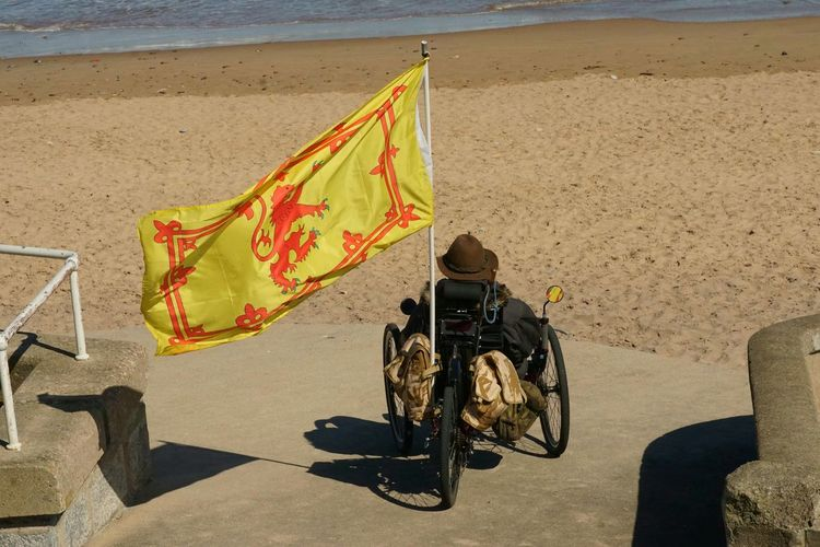 Rear view of man with flag on wheelchair at beach