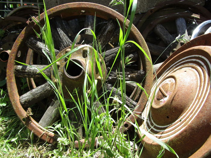 Day Deterioration Front Or Back Yard Grass No People Old Old Hubcap Old Wheelcover Outdoors Vintage Car Wheel Wheel
