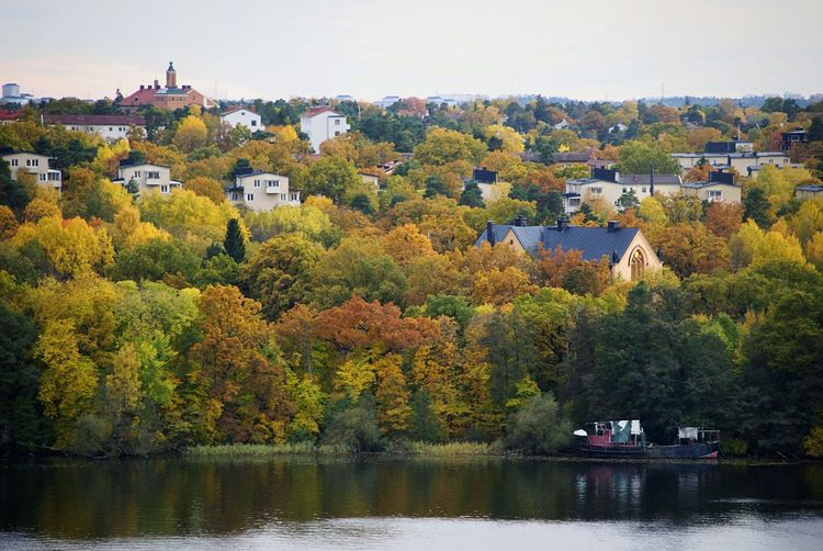 Bromma in the distance | Autumn Colors Colors Of Autumn Morning Lake Ulvsunda Peace And Quiet