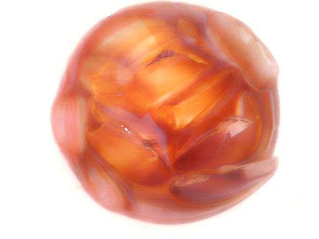 El fondo de un vaso de refresco Refresco Soda Ice Soda Bottles Close-up Single Object