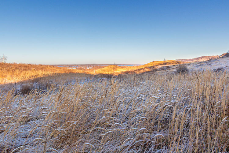 Scenic view of snowy field against clear sky during winter