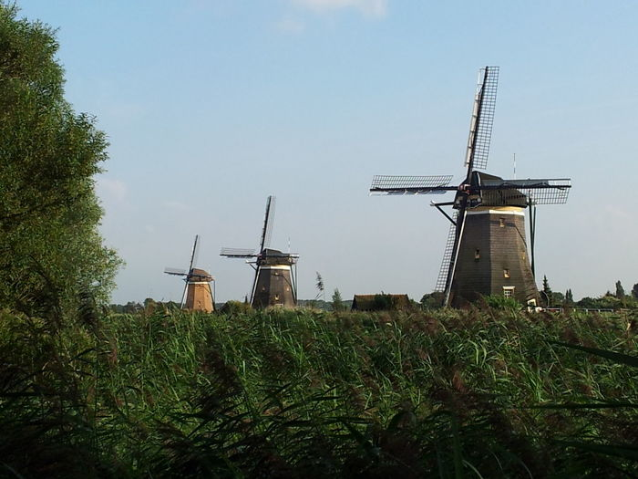 Architecture Clear Sky Field Leidschendam Nature Outdoors Sky Stompwijk Windmill