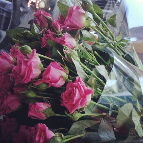 А сегодня исполнили мое второе желание! :) розы розыспрей