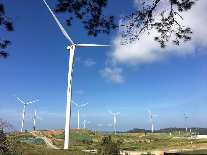 Alternative Energy Wind Turbine Wind Power Environmental Conservation Windmill Renewable Energy Fuel And Power Generation Industrial Windmill Day Field Outdoors Sky No People Nature Low Angle View Rural Scene Beauty In Nature Tree Traditional Windmill