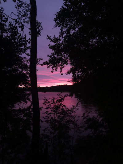 view Colored Idyllic Coloredclouds Branch Ripples Tranquility Tone Midnight Branches Nightsky Horizon Landscape Sunset Lakeshore Violet Sunny Glow Shade Shadow Russia Dark Daily Walk Tree Water Lake Silhouette Reflection Sky Infinity