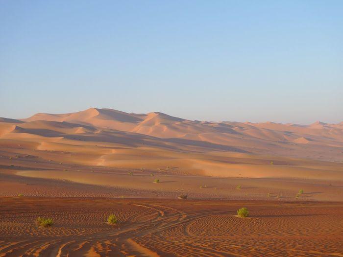 Abu Dhabi Rub Al Khali EyeEm Selects Landscape Tranquil Scene Nature Scenics Desert Sand Dune Tranquility Sand Beauty In Nature