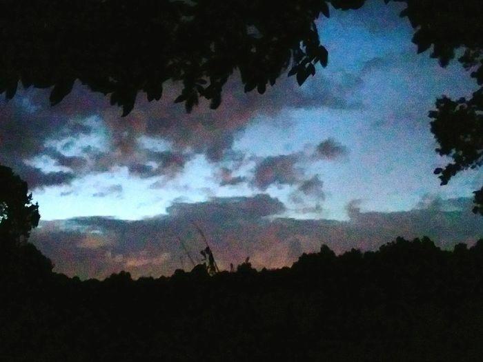 Tree Mountain Astronomy Milky Way Silhouette Galaxy Star - Space Sky Landscape Cloud - Sky Dramatic Sky Majestic Storm Cloud Romantic Sky Thunderstorm Cloudscape Moody Sky Meteorology Atmospheric Mood Emission Nebula Storm Spiral Galaxy Contrail Pixelated Aurora Polaris