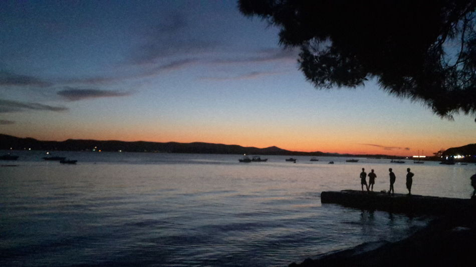 Sunset Sunset Water Reflection Sky Sea Beauty In Nature Sun Biograd Na Moru Tree Pine