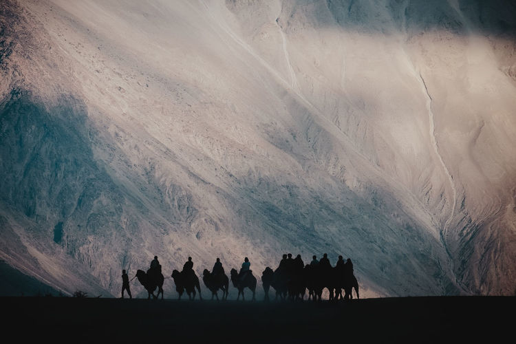 Silhouette image of people riding camel in desert mountain Silhouette Silhouettes People Riding Camel Camels Desert Mountain Tourist Tourism Traveler Travel Journey Mammal Animal Livestock Land Group Of Animals Nature Animal Wildlife Beauty In Nature Landscape Walking Working Animal Outdoors