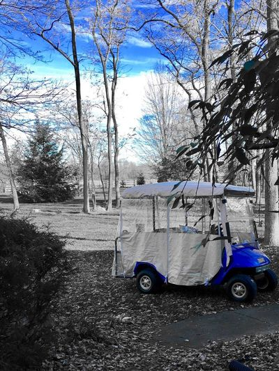 Day Golf Cart Outdoors Beauty In Nature Ohio Color Filter Blue Scenics Ohio, USA Fall Fall Beauty Nature
