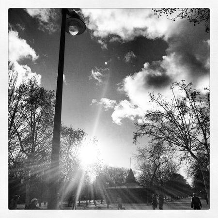 Streetphotography Blackandwhite Black And White España SPAIN Madrid Streetphoto_bw Blanco Y Negro Parque Del Retiro