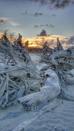 Sunset Sea Snow