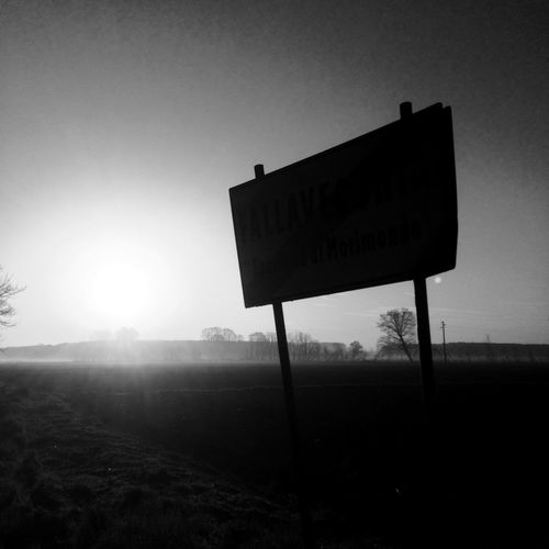 747 EyeEmNewHere Landscape Monochrome Blackandwhite Sunlight Road Sign Sunbeam Nature No People Sun Clear Sky Outdoors Sky Day Beauty In Nature