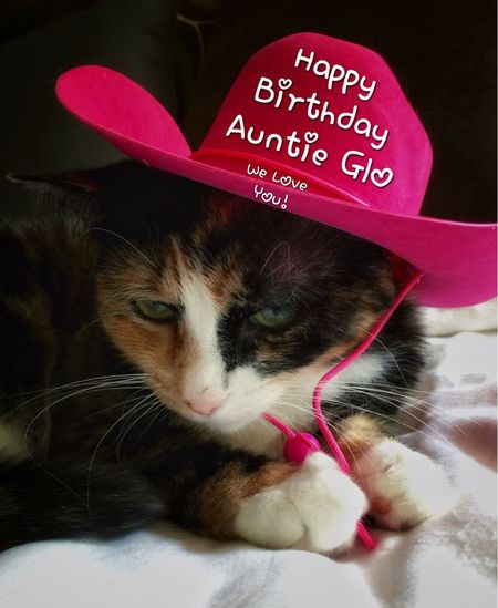 Happy Birthday to our beautiful dear friend, Glo! You have brought so much laughter in our lives with your amazing photos and stories of your adorable kitties. Thank you, for being such a wonderful friend! We love you so very much!! Tadaa Community Tadaa Friends Tadaa Tadaakitties Cute Pets Cute Cats Cat I Love My Cat Happy Birthday! I Love You !