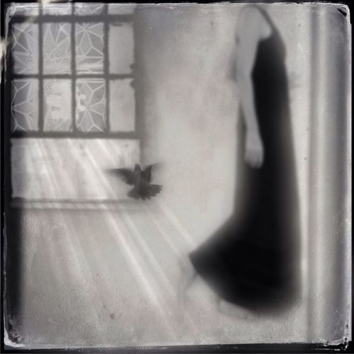 AMPt - Shoot Or