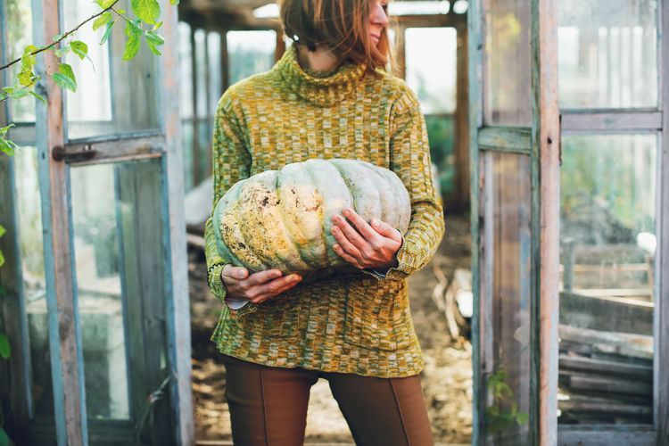 A young woman holding in her hands aripe pumpkin crop yields. thanksgiving and halloween preparation