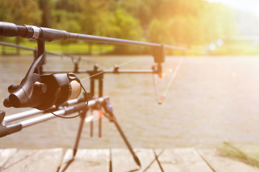 Rodpod with fishing rods on the wooden footbridge. Angling Fishing Rod Footbridge King Fisher King Fishing RodPod Angling Rod Day Fish Fisherman Fishing Fishing Pole Lake No People Outdoors Recreational Pursuit Rod Rod Pod Sunlight