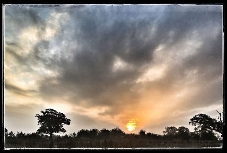 Sunrise whilst walking the dogs Cloud - Sky Beauty In Nature Outdoors Cloudscape Dramatic Sky Landscape Early Morning