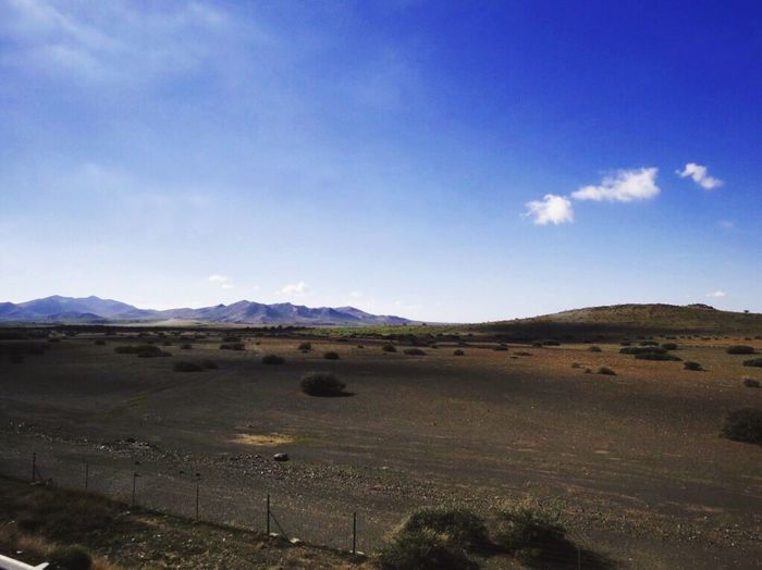 moroccan rock desert 🐫 EyeEm Best Shots EyeEm Selects Morocco Sky Rock Desert Rock Sky Environment Landscape Scenics - Nature Tranquil Scene Beauty In Nature Cloud - Sky Idyllic Blue Non-urban Scene Outdoors Nature Field No People Land Mountain Range Day Tranquility Plant Mountain