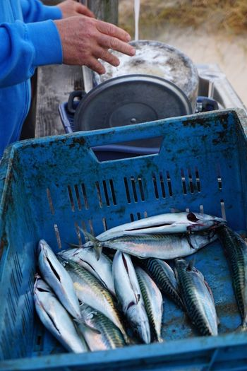 Midsection of man standing by plastic crate with mackerels on table