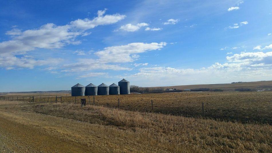 Prairies EyeEm Nature Lover Beautiful Nature Exploring Nature EyeEm Landscape EyeEm Sky Lover Proveyouaregreen