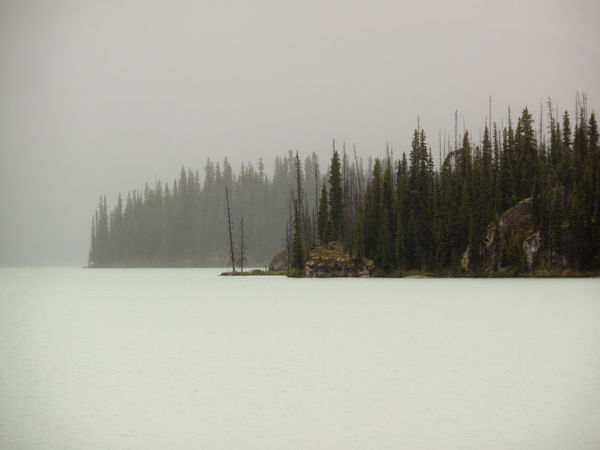 Alberta Beauty In Nature Canada Cold Temperature Day Forest Jasper National Park Landsape Landscape_Collection Landscape_photography Mountain Nature No People Outdoors Scenics Snow Tranquil Scene Tranquility Tree Water Winter