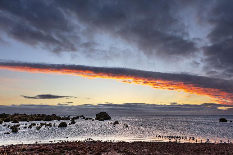 Cloud - Sky Water Sky Scenics - Nature Sea Beauty In Nature Outdoors Dramatic Sky Orange Color No People Beach Birds