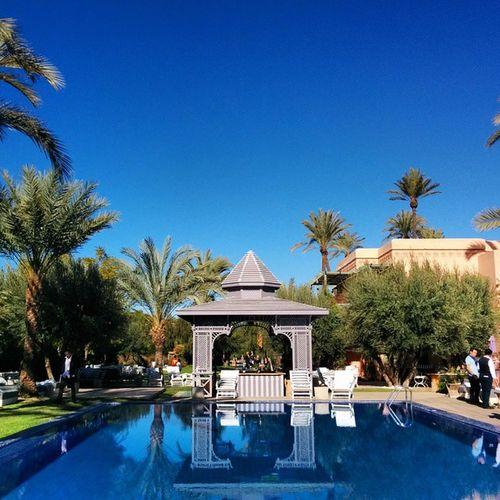 Impression Marrakech levant ! Jardindines Happynewyear