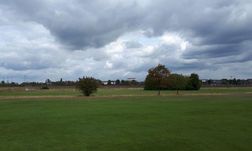 Tree Golf