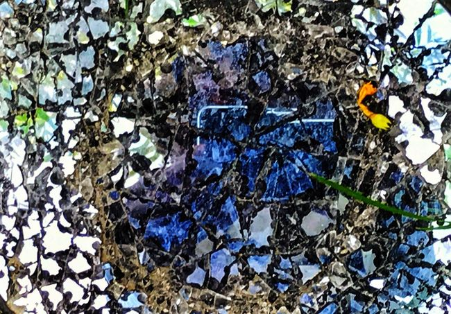 Leaf Directly Above Nature Outdoors Day No People Growth Beauty In Nature Close-up Mirror Broken ArtWork Eyem Gallery Eyemart